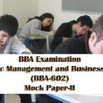 BBA Strategic Management and Business Policy Sample Model Mock Test Paper 2