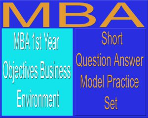 MBA 1st Year Objectives Business Environment Long Question Answer Set