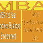 MBA 1st Year Short Objectives Business Environment Question Answer Model Practice Set